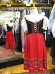 Dirndl red skirt